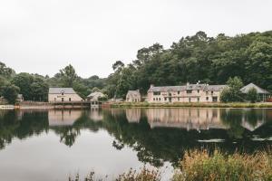 Location gîte, chambres d'hotes Terres de France - Le Domaine du Moulin Neuf dans le département Morbihan 56