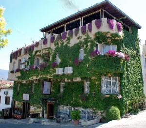 Гостевой дом Bella Hotel, Сельчук