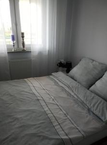 Apartament Górczyn