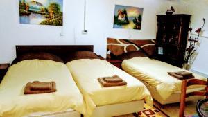 Trikala Apartments 2