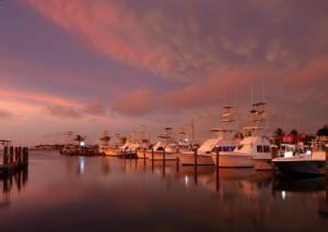 Postcard Inn Beach Resort & Marina (20 of 93)