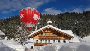 Bauernhof Krahlehenhof - Hotel - Filzmoos