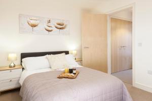 The Coliseum Apartments, Appartamenti  Cheltenham - big - 13