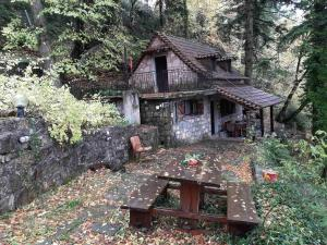 Forest House - Hotel - Áno Polídhrosos