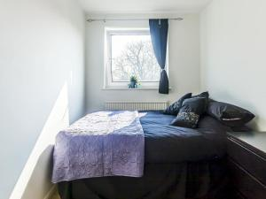 2 Double Bedroom Flat on Blackheath!, Apartmány  Londýn - big - 9