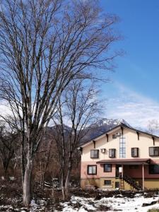 Guesthouse Aozora (Blue Sky) - Hotel - Myoko