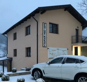 Pensiunea Exedra - Hotel - Borsa