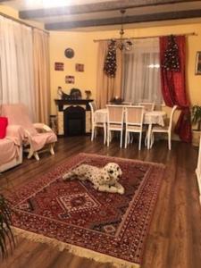 Загородный дом - Hotel - Medvezh'i Ozera