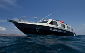 Blue Marlin Dive Komodo, Penzióny  Labuan Bajo - big - 33