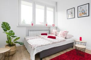 Cosy spot close to Tauron Arena and City Center