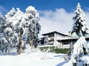 Hotel Bor, Боровец