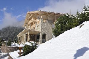 Hotel Portillo Dolomites 1966' - Selva di Val Gardena