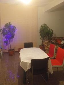 Vila Elena si Ionut