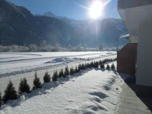 Apartments Zillertal - Chalet - Mayrhofen