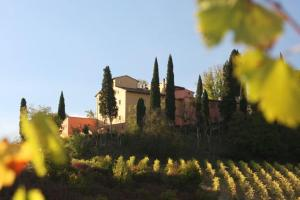 San Gimignano Villa Sleeps 6 Pool Air Con WiFi - AbcAlberghi.com