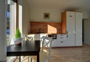 ApartInvest Apartament Grottgera Studio 3
