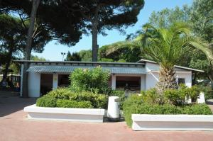 Houses and Apts. in Punta Marina 21287