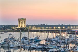 Holiday Inn Charleston-Rivervi..