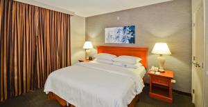 Embassy Suites by Hilton Denve..
