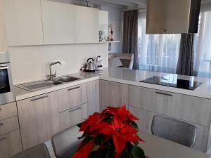 De Luxe apartment Olimp - AbcAlberghi.com