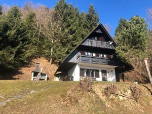 Sunny chalet Anica