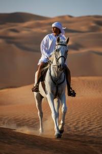 Qasr Al Sarab (19 of 151)