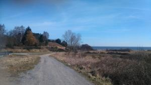 Arkadia domki holenderskie