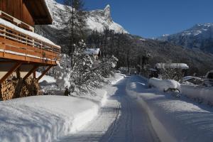 Face Mont-Blanc - Hotel - Passy Plaine Joux
