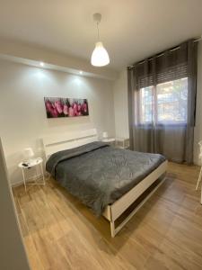 B&B JOIS - Accommodation - Bologna