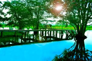 Canal Side Safari Resort