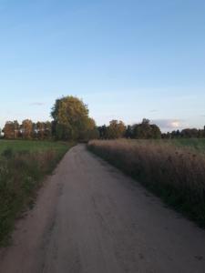 Mazurska Bajka koło Grunwaldu