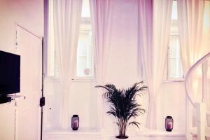 Aleaus Apartment - AbcAlberghi.com