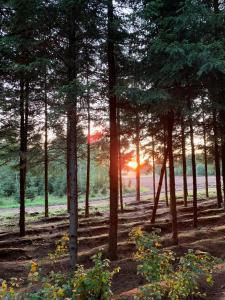 Agroturystyka Juszkowy Gród
