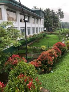 Lotus Grand View Hotel - Remuna, Hotels  Horana - big - 53