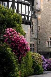 Schlosshotel Kronberg (13 of 37)
