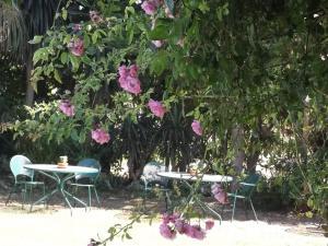Villa De Loulia (5 of 67)