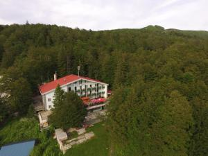 Great Mountain B&B Platak - Accommodation