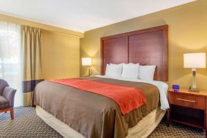 Comfort Inn Denver Central