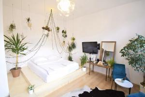 Apartament na modrzejowskiej pełen sztuki i zieleni