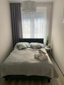 Apartament Walczaka 11