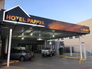 Hotel Papaya