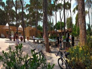 Park Albatros, Holiday parks  San Vincenzo - big - 135