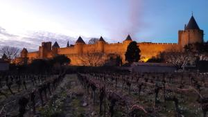 Domaine Fontgrande Gîte - Hotel - Carcassonne