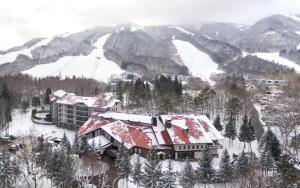 Accommodation in Hakuba 47