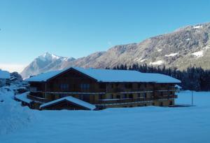 Grand Massif Morillon 2P4 confort - Hotel - Morillon