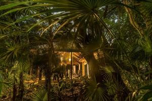Viceroy Riviera Maya (16 of 65)