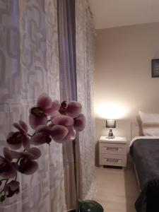 Vena apartment