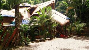 Se Ua BANDB and House Of Adventure, Manzanillo