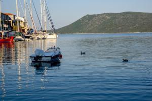 Limani Cottage Alonissos Greece