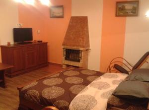 Apartman Nadezda, Appartamenti  Karlovy Vary - big - 20